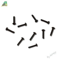 Vis autotaraudeuse 2x10 (10pcs) (C13003)