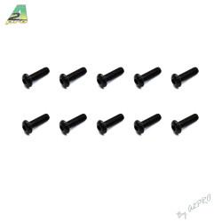 Vis tete bombee M3x10 (10pcs) (C13007)