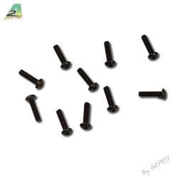 Vis tete bombee M3x12 (10pcs) (C13008)