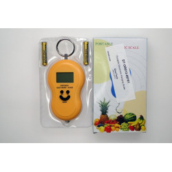 Portable Electronic Hanging Scale